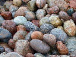 Wet pebbles at the water's edge in Pleasant Bay, Cape Breton Island, NS.