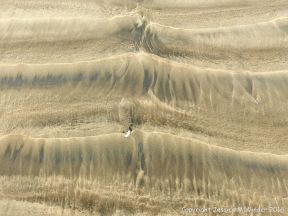 Natural patterns left by the ebbing tide on a sandy beach