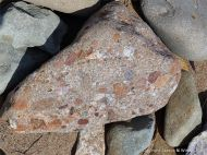 Beach stone of conglomerate on Crystal Cliffs shore