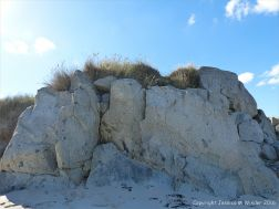 Rocky outcrop of Herm Granodiorite on Mouisonniere Beach