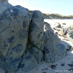 Rocky outcrop of Herm Granodiorite with xenoliths