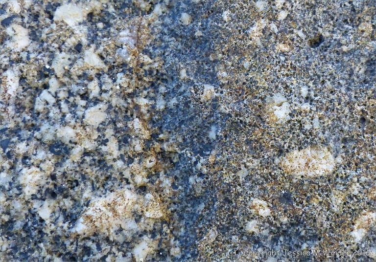 Macro photograph of crystals in Herm Granodiorite with a xenolith