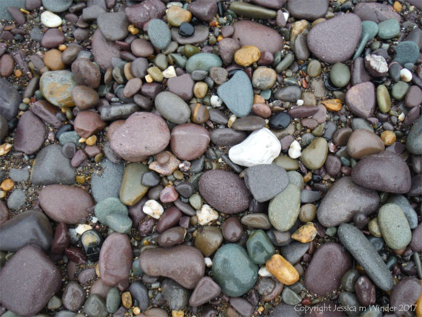 Pebbles on the beach at Trabeg oin the Dingle Peninsula