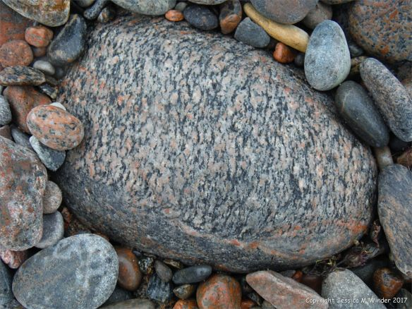 Beach boulder at Corney Brook on the Cabot Trail on Cape Breton Island