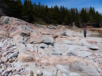 Aplite and pegmatite dykes in granite