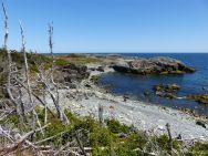 Looking down on Morning Star Cove from the Louisbourg Lighthouse Trail
