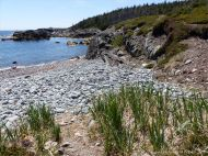 The shore at Morning Star Cove