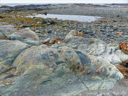 The rocky shore at Fourchu Head