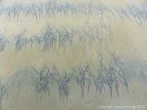 Natural abstract art showing dendritic drainage patterns in sand on the beach