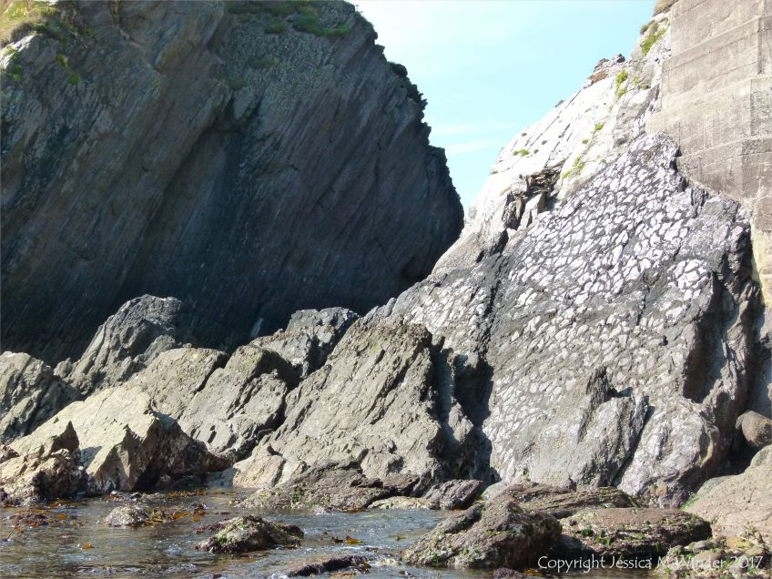 Rock face with preserved mud cracks at Dunquin Harbour