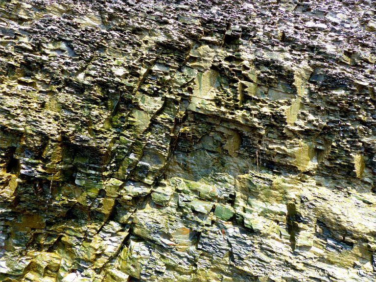 Carboniferous cliff strata with green algal slime