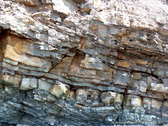 Carboniferous rock strata at Joggins Fossil Cliffs