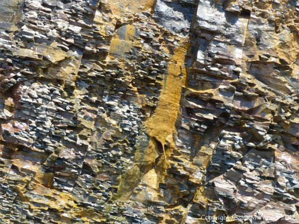 Carboniferous cliff strata with yellow slime