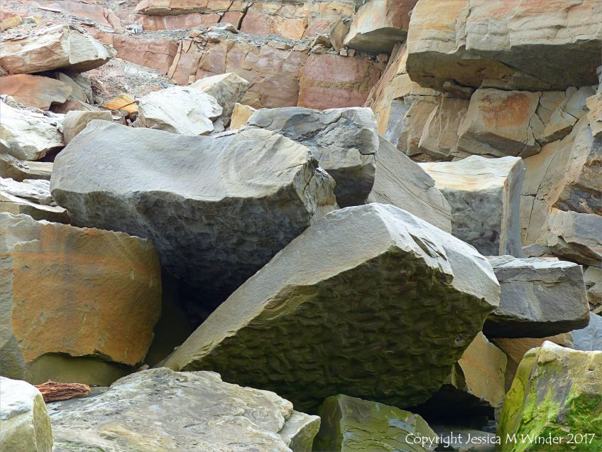 Ripples preserved from water currents over fine sediments in the Carboniferous Period on the lower surface of boulders from a rock fall