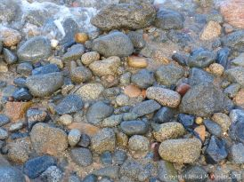 Pebbles at Rousse Point