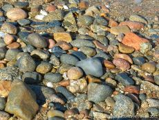 Wet pebbles at Rousse Point