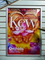 Sign for the orchid exhibition at Kew Gardens