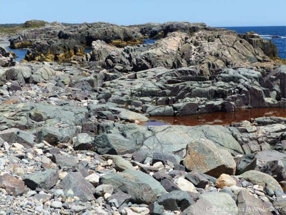 The shoreline with rocks of pyroclastic breccia north of Louisbourg Lighthouse in Cape Breton in Nova Scotia