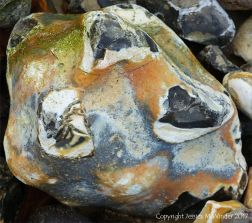Close-up of beach stone with interesting pattern and texture