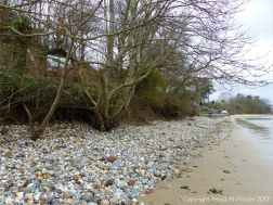 South Beach, Studland showing effects of erosion
