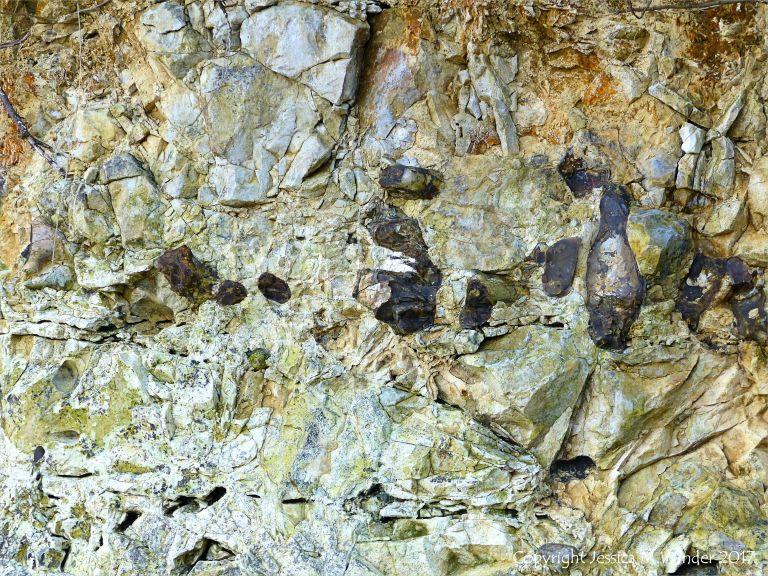 Line of flint nodules embedded in chalk