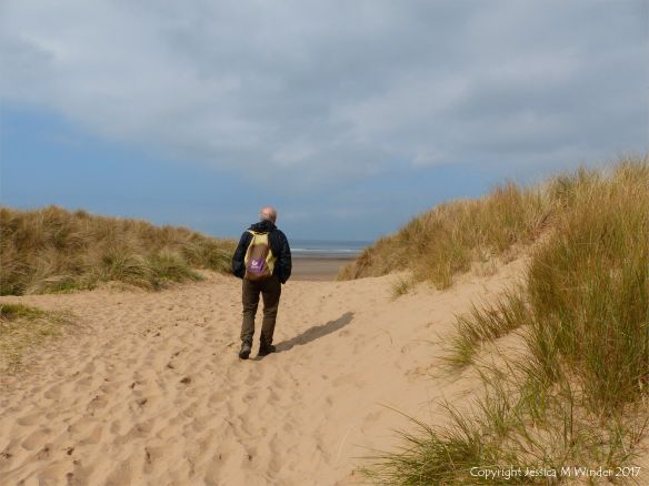 Leaving the dune path and reaching the beach