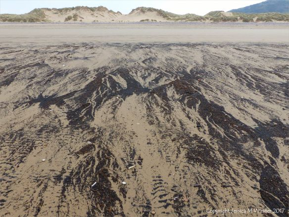 Natural patterns of black drift particles at Rhossili, Gower