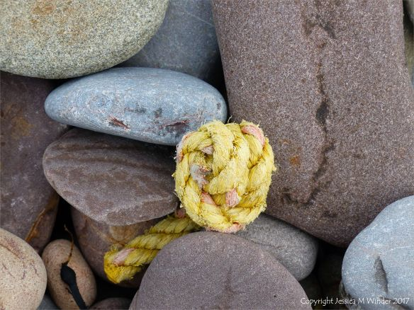 Piece of knotted yellow rope on pebbles at Rhossili