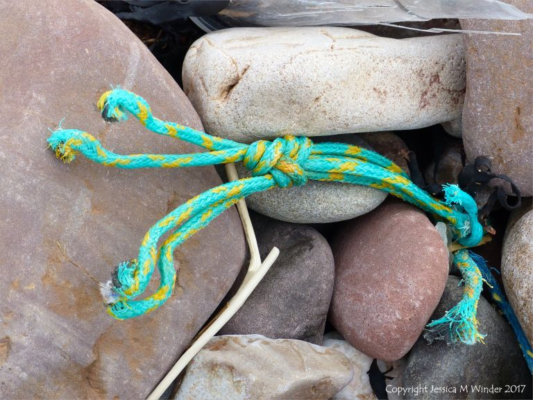 Piece of green knotted rope on pebbles at Rhossili