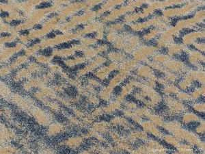 Natural patterns on a sandy beach