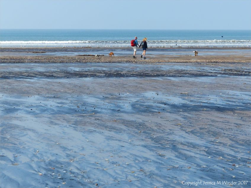 Multiple driftlines and strandlines on the beach at Rhossili