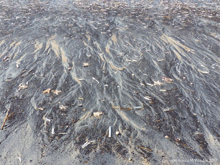 Natural patterns in black detritus on the strandline at Rhossili beach
