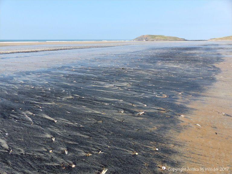 Strandline of fine black detritus on the sandy beah at Rhossili in Gower, South Wales