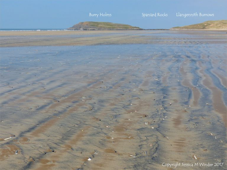 Natural patterns in the sand at Rhossili