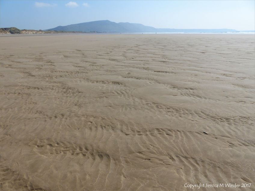 View looking south showing ripples in the sand at Rhossili Bay