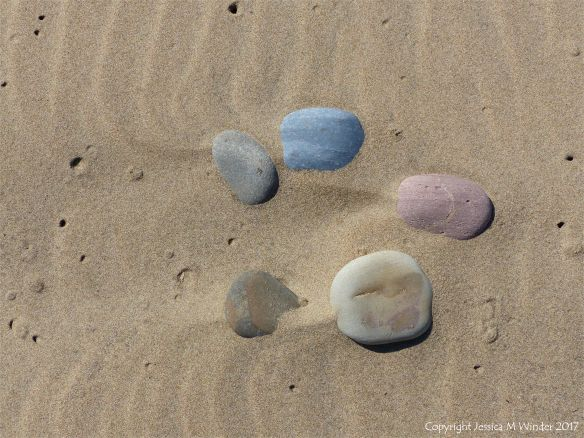 A natural arrangement of pebbles in dry sand at Rhossili in Gower