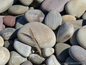 Pebbles on the beach near Llangennith Burrows at Rhossili Bay on the Gower Peninsula