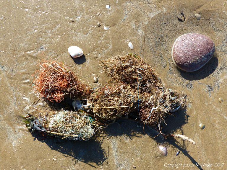 Tangled fishing line flotsam on the seashore