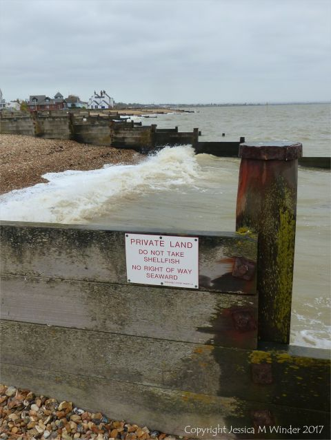 Wooden breakwaters or groynes on the beach are a major coastal defence structures against flooding