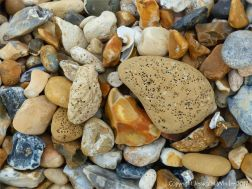 Beach stones with holes in them