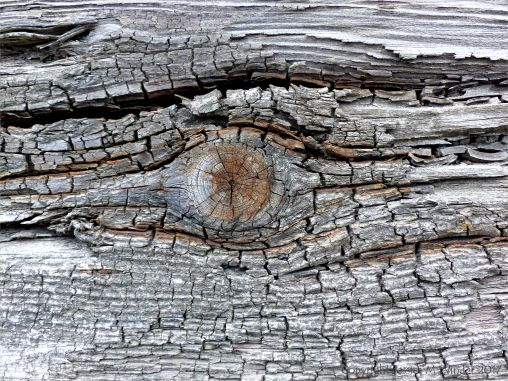 Rust-stained woodgrain in old recycled timber