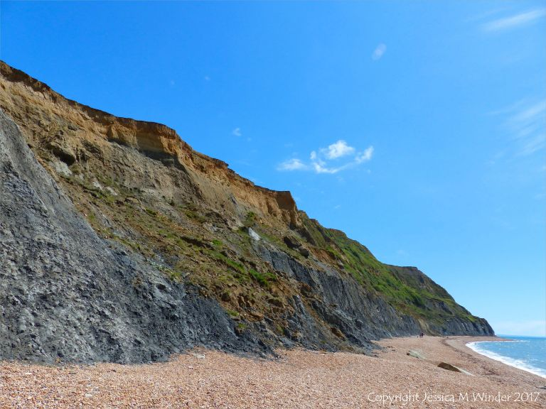 The cliffs of the east side of the beach at Seatown, Dorset, England