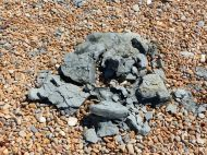 Lump of dry shattered Eype Clay on a pebble beach