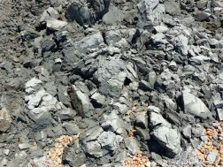 Heap of Eype Clay Member debris from a minor rock fall on cliffs at Seatown