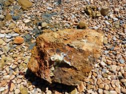A rusty rock with crystals lying on a pebble beach