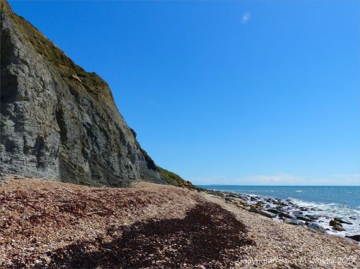 View looking east at Ridge Cliff and East Ebb on Seatown beach in Dorset