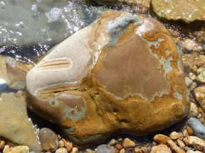 Boulder on the beach at Seatown on the Jurassic Coast