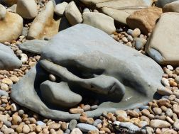 Strangely shaped boulder on the beach at Seatown in Dorset