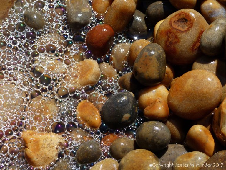 Coloured wet pebbles with sea foam on the waterline at Seatown beach, Dorset, England.