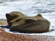 Boulder splashed by waves at Seatown in Dorset